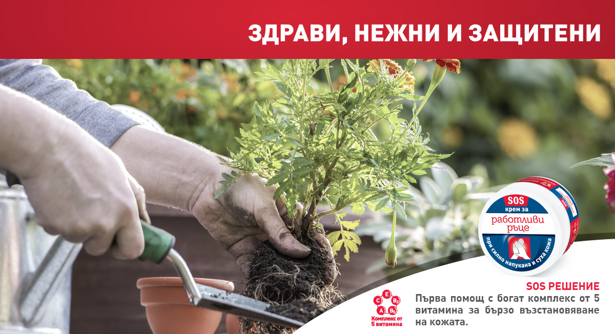 04_RR_Banner_1200x652px_Gardening_SOS_fin